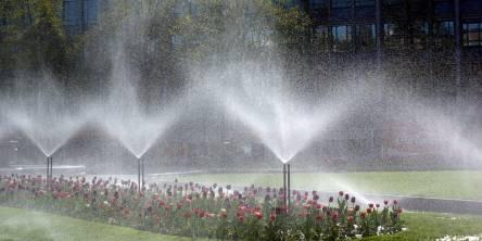 Flowers Sprinkler System