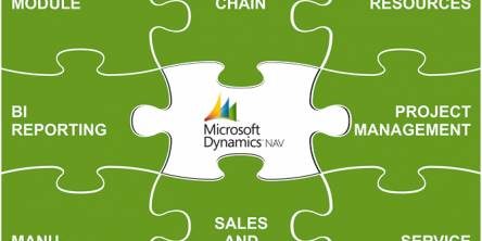 microsoft-dynamics-partner