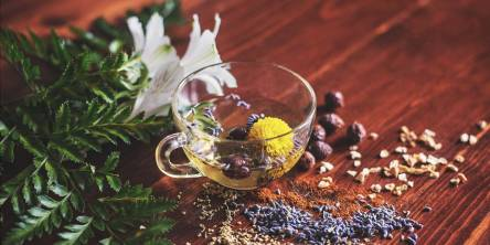 Best Herbal Teas To Serve Health With Taste