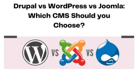 Drupal vs WordPress vs Joomla: Which CMS Should you Choose?