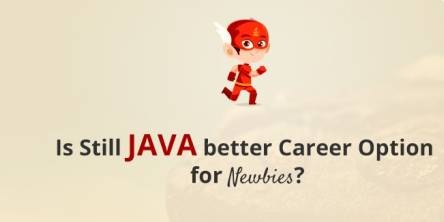 Is JAVA a Better Career Option for Newbies