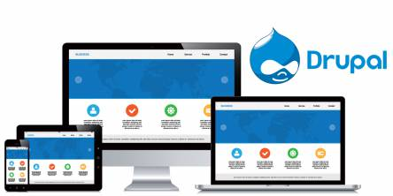 CRM Integrations for Drupal Site