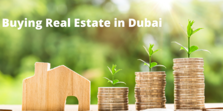 Real Estate in Dubai