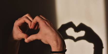 A set of hands creating the shape of a heart which create a shadow on the wall behind.