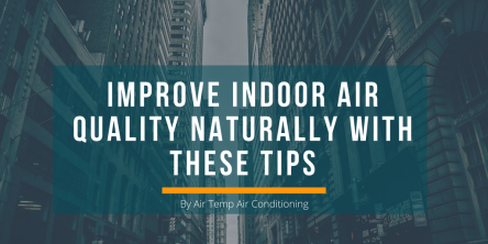 5 Tips to Improve Indoor Air Quality Naturally