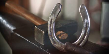 5 Things You Most Likely Didn't Know About Farrier Equipment