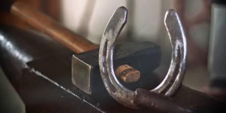 Radius Rasp, Farrier Tools