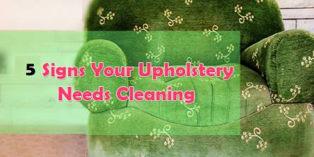 5 signs that you need Professional Upholstery Cleaning Services