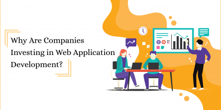 Why Are Companies Investing in Web Application Development?