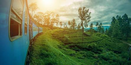 Explore Sri Lanka with the Best Tour Packages