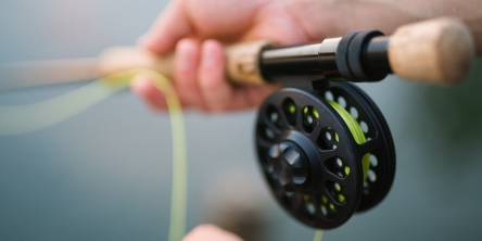 Fishing Guide 101: Basic fishing equipment for beginners
