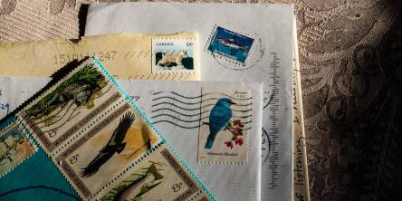 How many stamps do I need to send a letter or package?