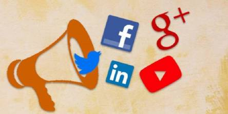 Role of Social Media in Political Campaigns