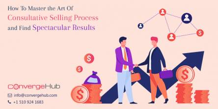 How Can You Master the Art Of Consultative Selling Process and Find Spectacular Results