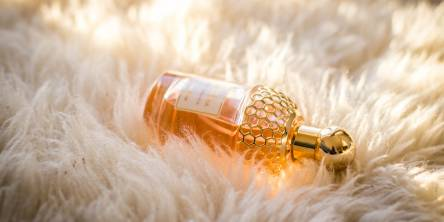 Things to Expect from Wholesale Perfume Distributors