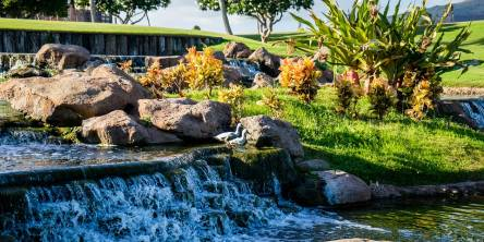how to design your perfect landscape