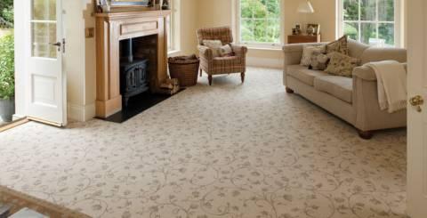 Professional carpet maintenance