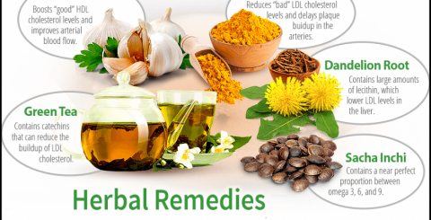 Herbal remedies for lowering the cholesterol levels