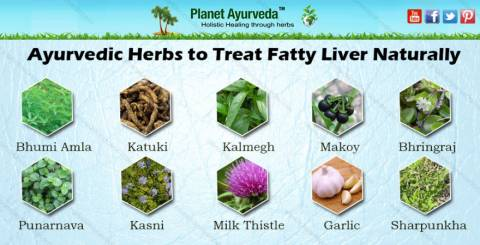 herbs for fatty acid
