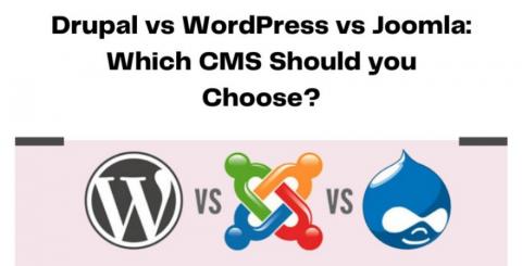 Drupal vs WordPress vs Joomla: Which CMS Should you Choose?