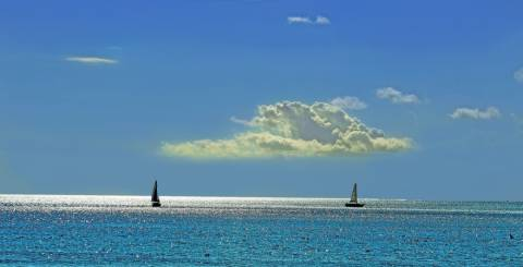 Two sailboats on the big blue