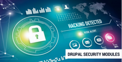 Drupal Security Modules