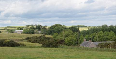 Growing Property Interest in Scotland