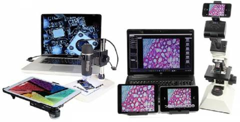 Points To Remember Before Buying Right USB Digital Microscopes