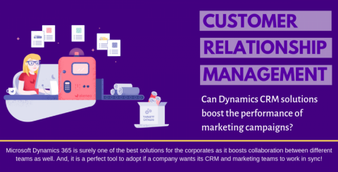 Can Dynamics CRM Solutions Boost The Performance Of Marketing Campaigns?