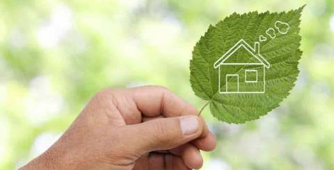 Smart Ideas for Saving Money While Helping the Environment