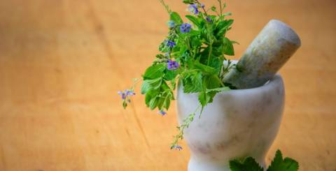 Anti-Aging Herbs For A Younger Skin