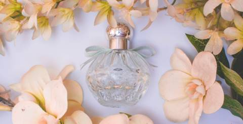 Are Perfumes the Best Gifts to Impress?