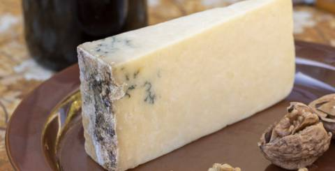 Moldy Cheese: 7 Benefits of Gourmet Product