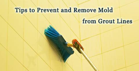 Best Tips To Prevent Mould Growth On Your Tiles