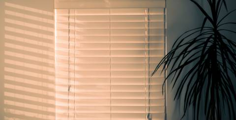 Types of Blinds and Shutters