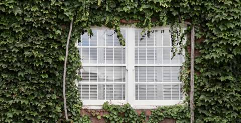 Reasons Why You Need to Replace Your Blinds with New Ones