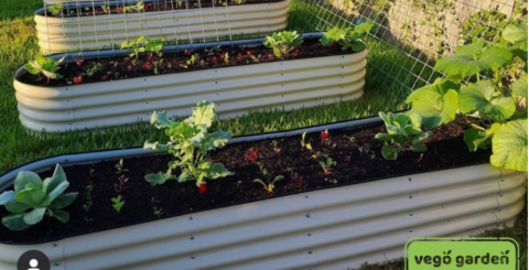 large raised garden beds