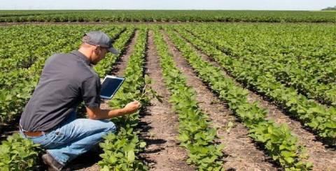 Farming Methods