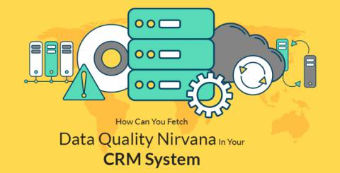 How Can You Fetch Data Quality Nirvana in Your CRM System