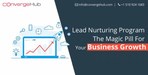 Lead Nurturing Program- The Magic Pill For Your Business Growth