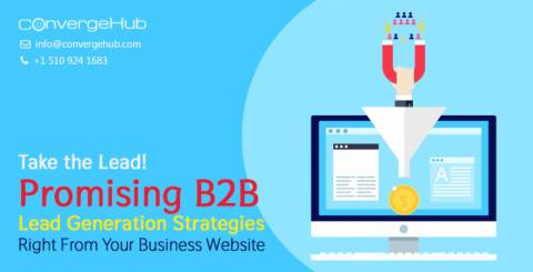 Lead Generation Strategies Right From Your Business Website
