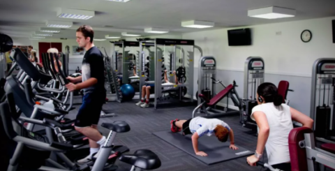 How Gym Software Is benefiting clients, staff, and owners?