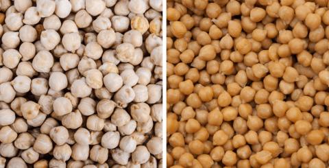 Garbanzo Beans vs. Chickpeas