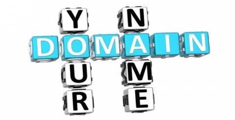 Domain Renew Service