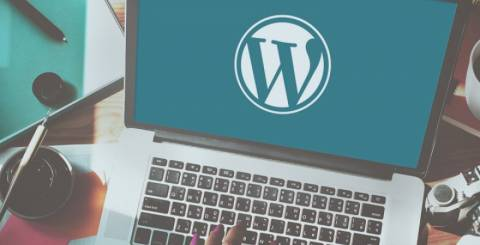 WordPress Theme Customization