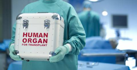 organ transplantation in kerala,liver transplant in kerala